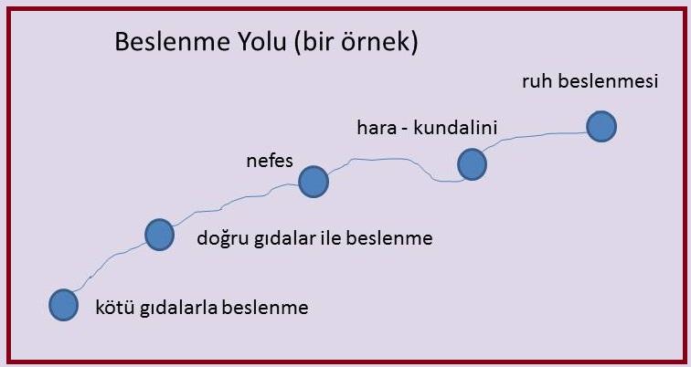 hara 2.jpg